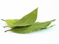 Očista pomocou bobkového listu zbavuje organizmus uložených solí