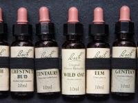 Homeopatia a Bachova terapia - dvojkombinácia so skvelými výsledkami