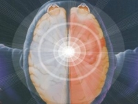 One Brain – život je obmedzený tým, čo ĽAVÁ HEMISFÉRA považuje za logické