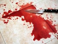 Tínedžerku, ktorá bodla brata Róberta, obvinili z usmrtenia