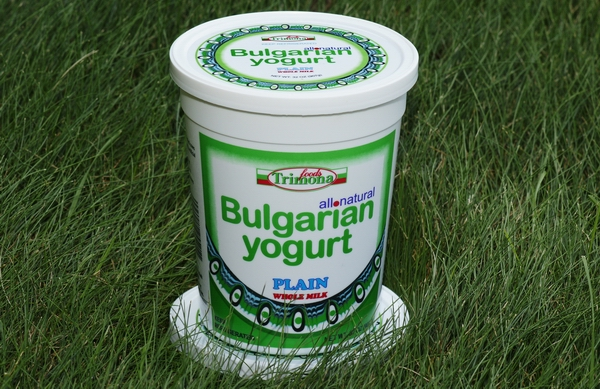 Bulgarian_Yogurt_4f835c1116ead